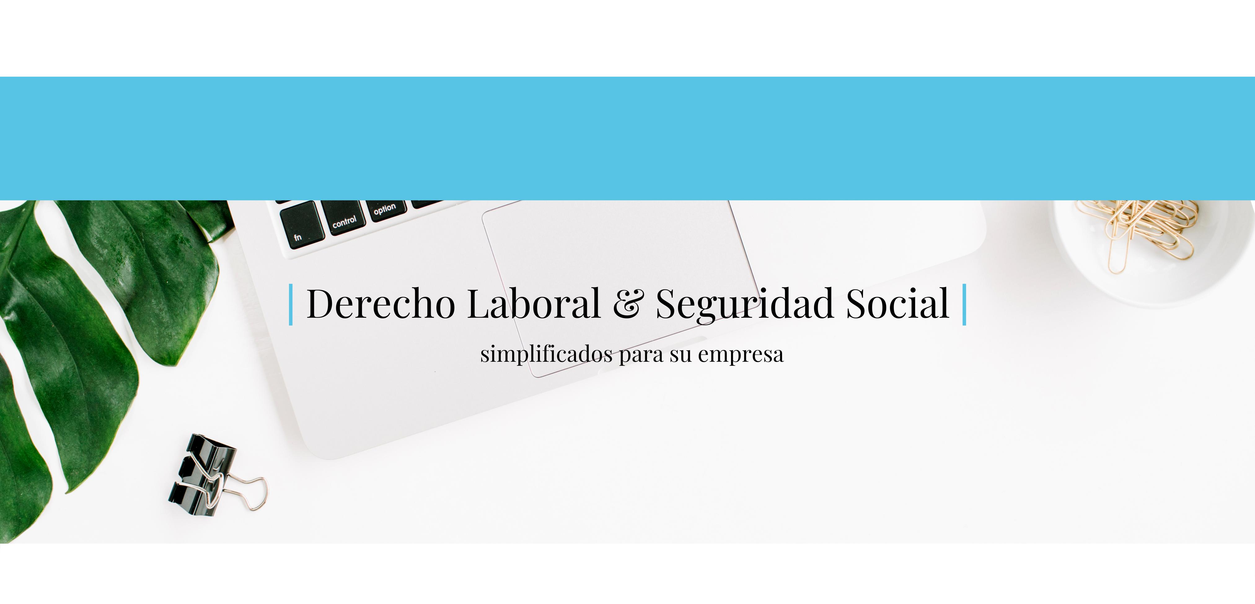 Derecho Laboral y la Seguridad Social simplificado para su empresa